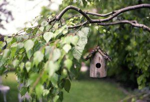inrichten kleine tuin